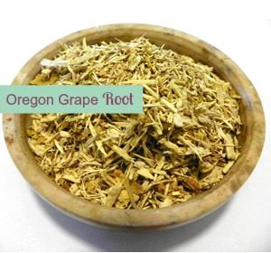 Oregon Grape Root | The Hormone Diva
