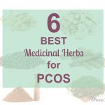 6 Best Medicinal Herbs for PCOS | The Hormone Diva