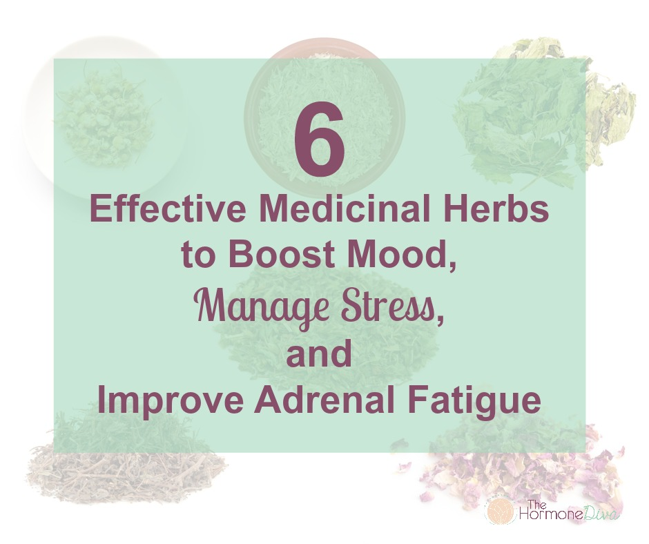 6 Effective Medicinal Herbs to Boost Mood, Manage Stress and Improve Adrenal Fatigue | The Hormone Diva